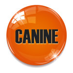 Corporate Images Canine